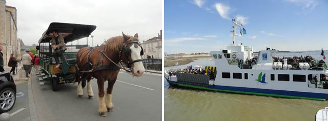 Visita a La Rochelle en coche de caballos, y a la isla dAix en barco
