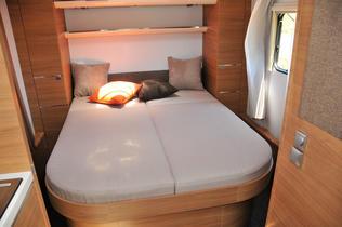 Las camas en distribución SC son elevables.