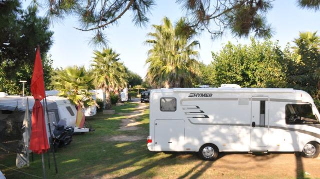 Las autocaravanas acampando en el camping La Ballena Alegre