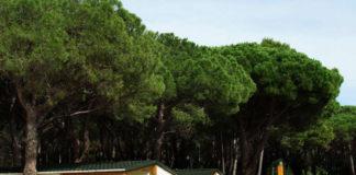 generalitat catalunya decreto campings EnCaravana